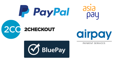 Credit Card Processing Or Payment Gateway Options